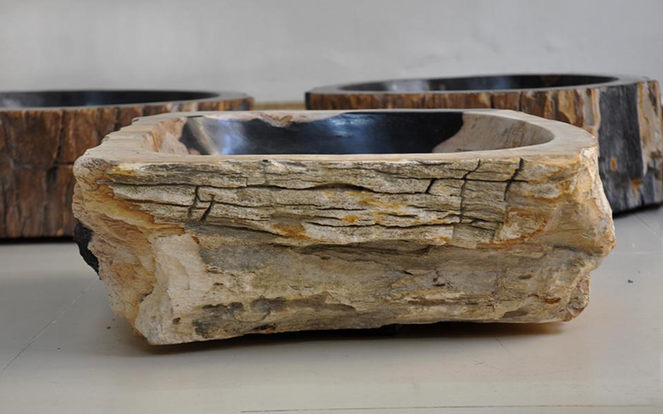 Lavabo gỗ hóa thạch, tự nhiên