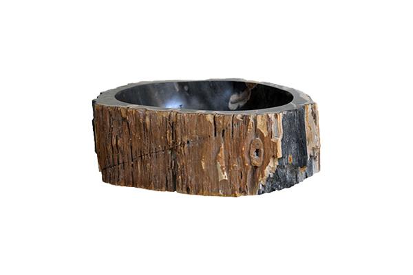 Gỗ hóa thạch là cây gỗ bị chôn vùi dưới lòng đất, tùy điều kiện khoán chất lòng đất, nếu có silic (SiO2) chúng ngấm vào các thớ cây gỗ qua hàng chục triệu năm làm cho gỗ trở nên cứng như đá.